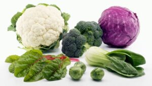 cancer-support-vegetables2_large