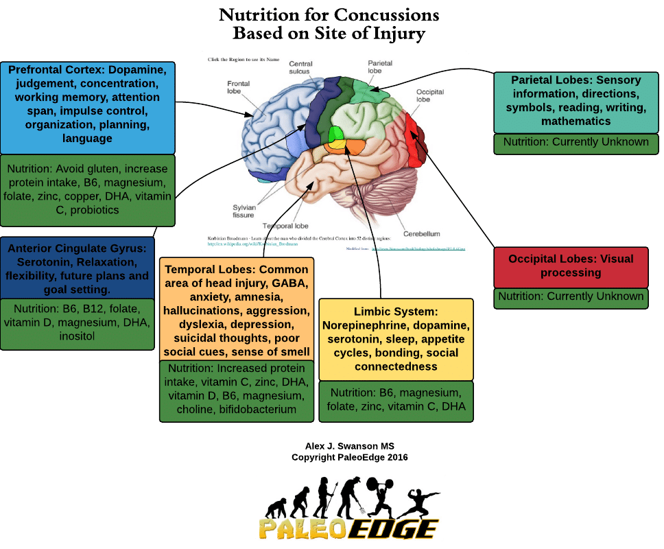 Nutrition for Concussions Based on Site of Injury