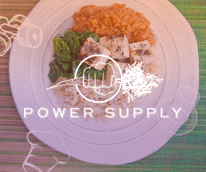 Power Supply PaleoEdge Banner