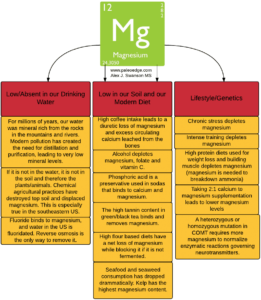 How Have We Become So Magnesium Deficient?
